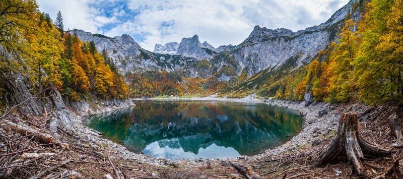 Boomstoten na ontbossing in de buurt van het Hinterer Gosausee-meer, Oberösterreich Het herfstbergmeer van Alpen met helder en tr royalty-vrije stock foto's
