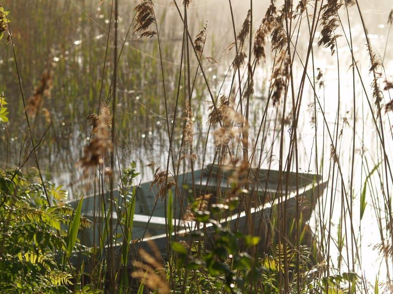 Boot auf dem See in einem nebelhaften Morgen lizenzfreie stockfotografie