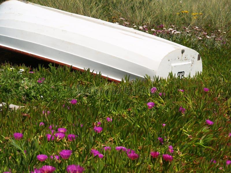 Boot auf dem Ufer stockbilder