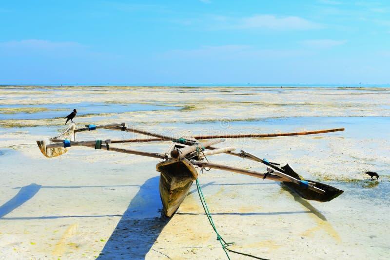 Boot bij tropische eb stock afbeeldingen