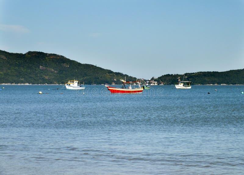 Boot in der Bucht von Bombas und von Bombinhas, Brasilien stockfotos