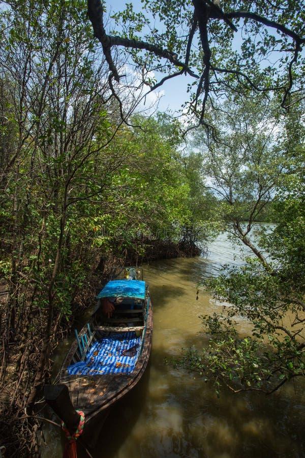 Boot hatte in der Mündung um Mangrovenwald verankert lizenzfreie stockfotografie