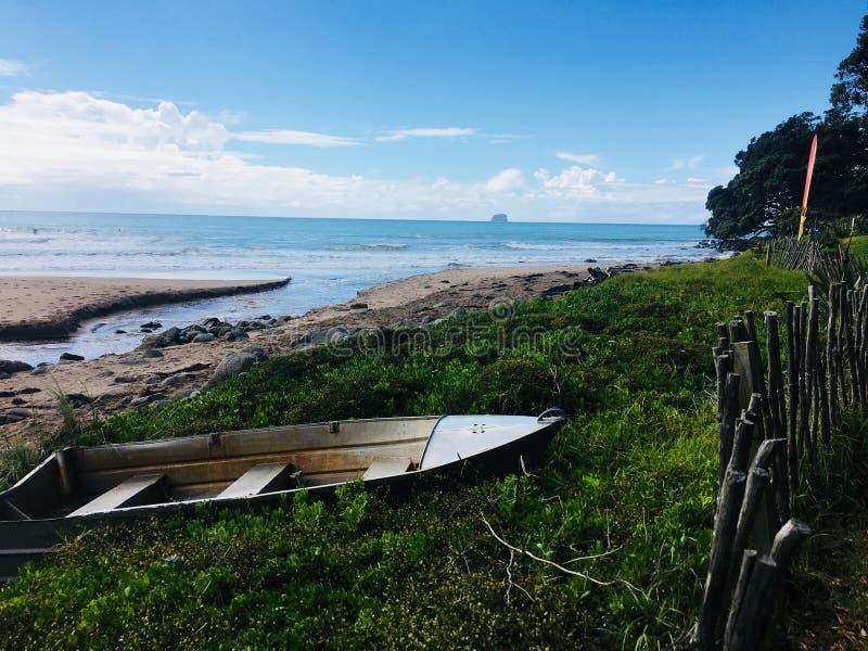 Boot im Heißwasserstrand Neuseeland lizenzfreie stockbilder