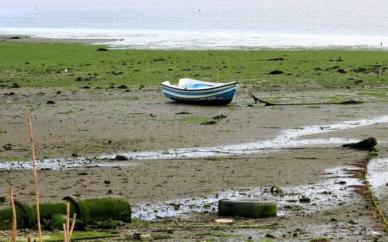 Boot at low tide royalty-vrije stock fotografie