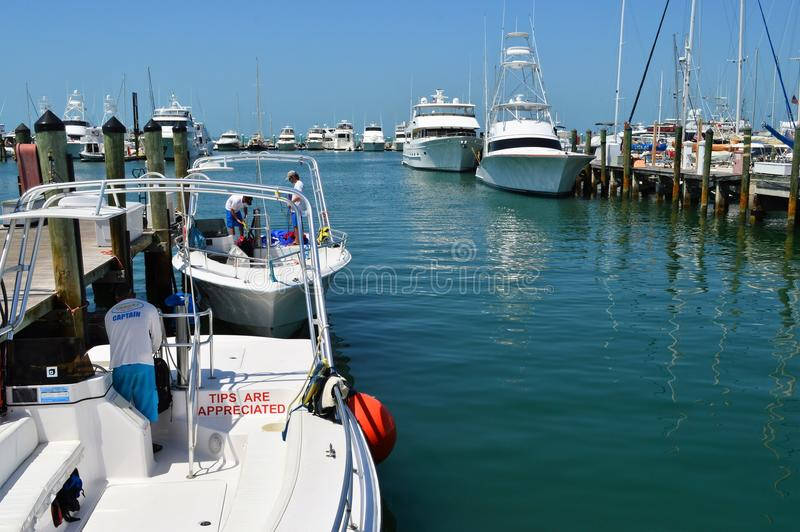 Boot Marina Key West Florida stock foto's