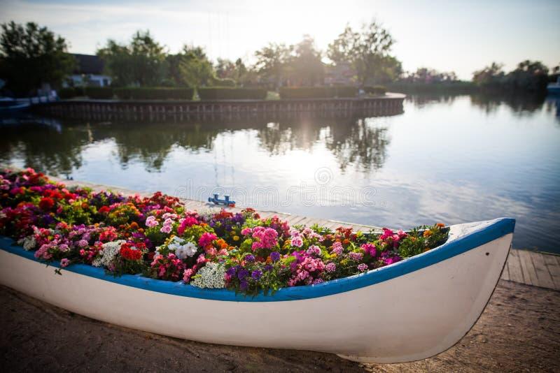 Boot met bloemen stock foto's