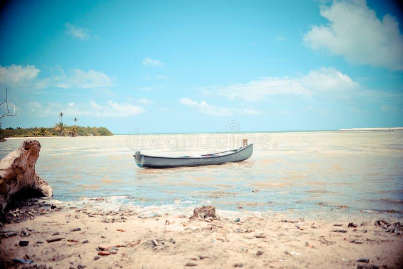 Boot op strand royalty-vrije stock afbeelding