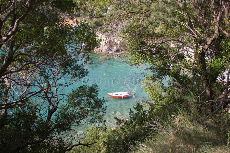 Boot op water met rode levendige kleur stock foto