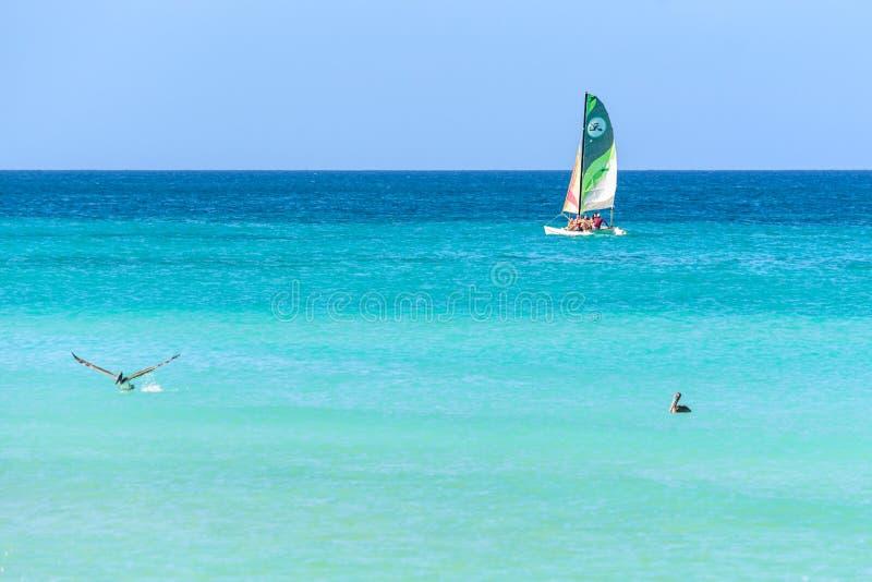 Boot, pelikaan en blauwe overzees in Varadero stock foto
