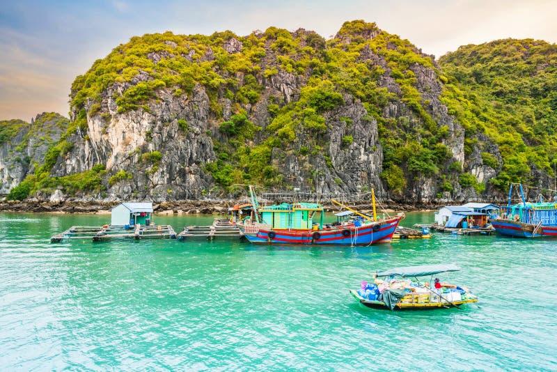 Boot an sich hin- und herbewegendem Dorf von Fischern und von Fisch- oder Austernlandwirten in Halong-Bucht, Vietnam lizenzfreies stockfoto