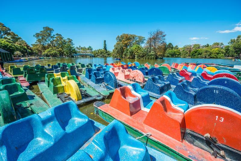Boote auf Palermo-Holz in Buenos Aires, Argentinien lizenzfreie stockfotos