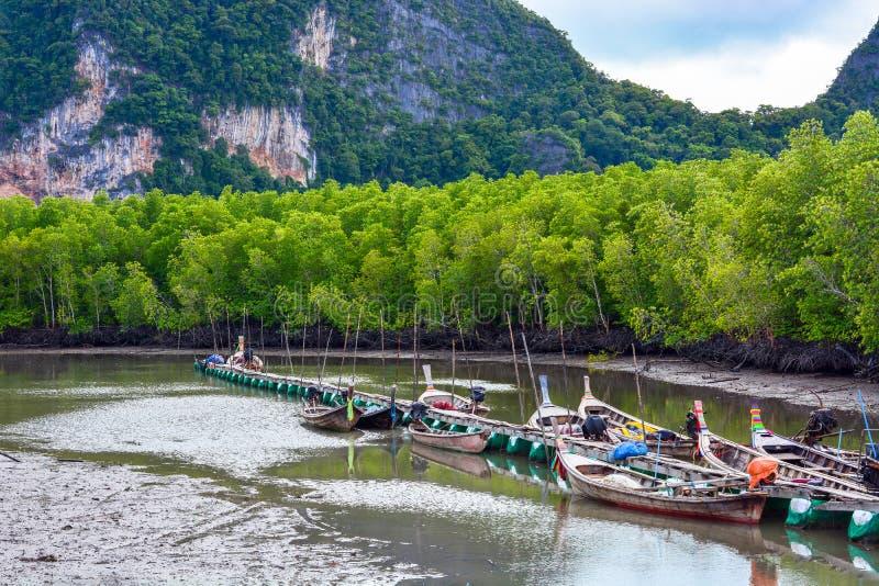 Boote des langen Schwanzes des Fischers, die an der Anlegestelle im Mangrovenwaldstrand, Phangnga, Thailand parken lizenzfreies stockbild