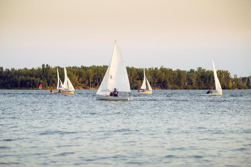 Boote, die in eine Regatta am späten Abend segeln stockfotografie