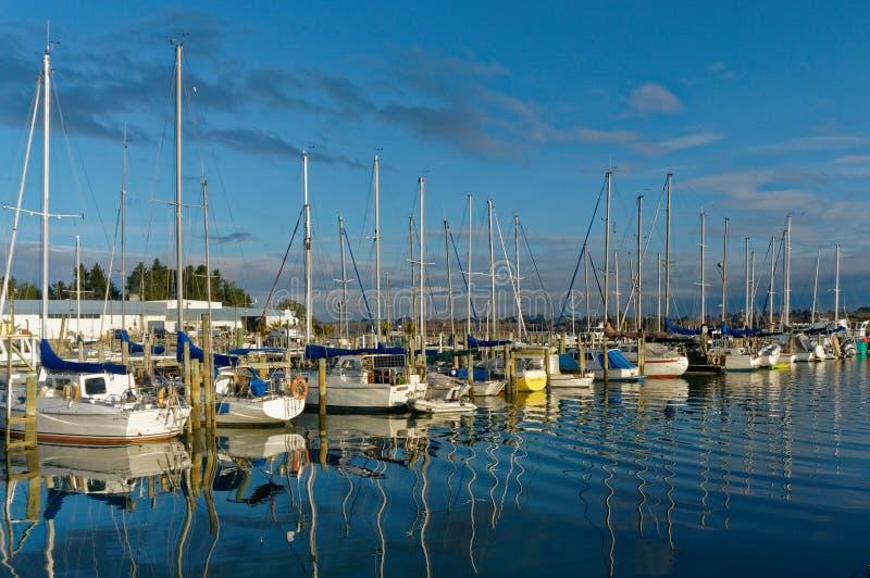 Boote festgemacht in Motueka-Jachthafen, Neuseeland stockfoto
