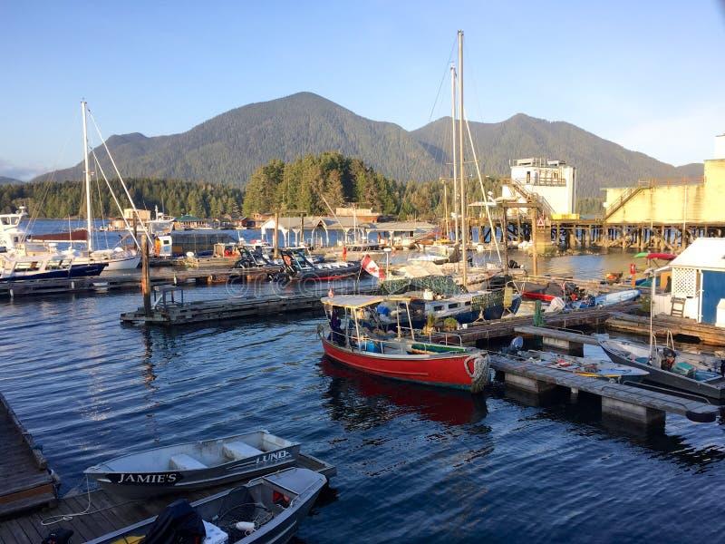 Boote im Hafen in Tofino, Kanada, am sonnigen Frühlingsabend lizenzfreies stockbild