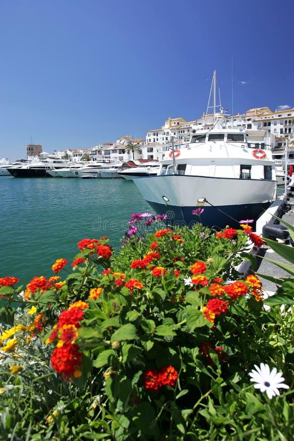 Boote und Blumen Puerto Banus im Jachthafen lizenzfreie stockfotos