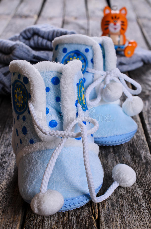 bootes στοκ φωτογραφία με δικαίωμα ελεύθερης χρήσης