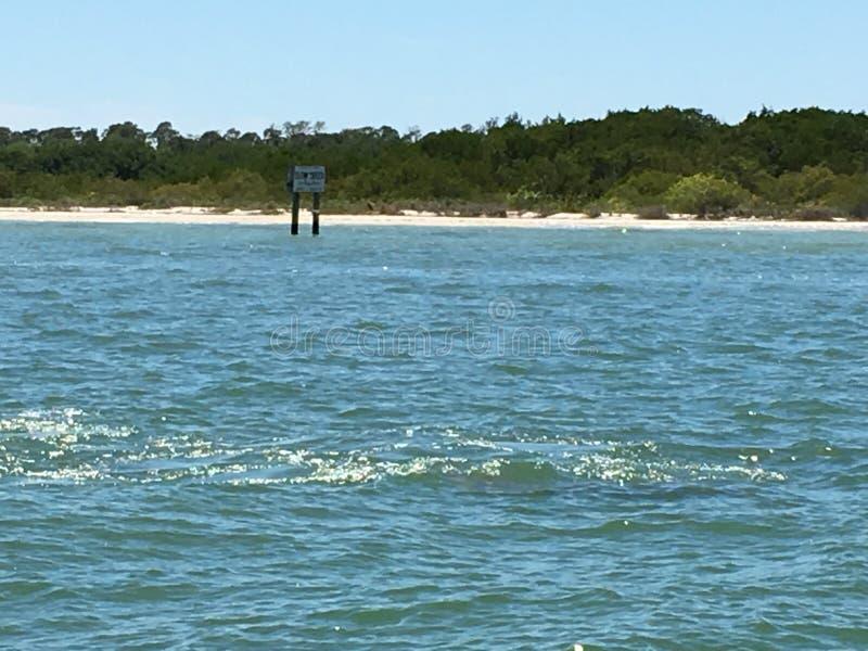 Bootgolven op Charlotte Harbour Florida royalty-vrije stock foto