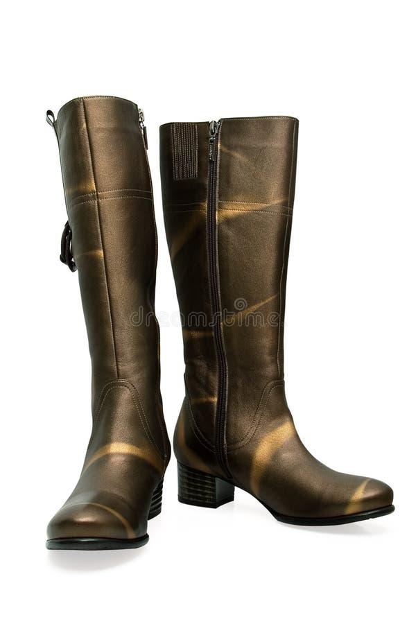 boots женщины s стоковые фото