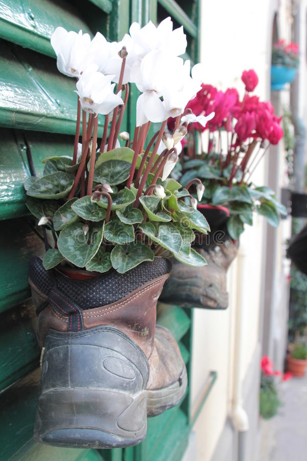 Boots with flowers royalty free stock images