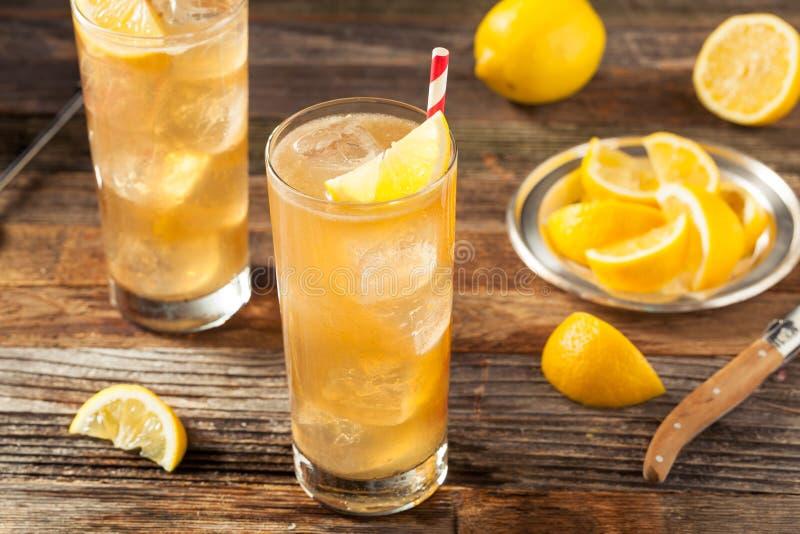 Boozy Long Island Iced Tea. With a Lemon Garnish royalty free stock photos