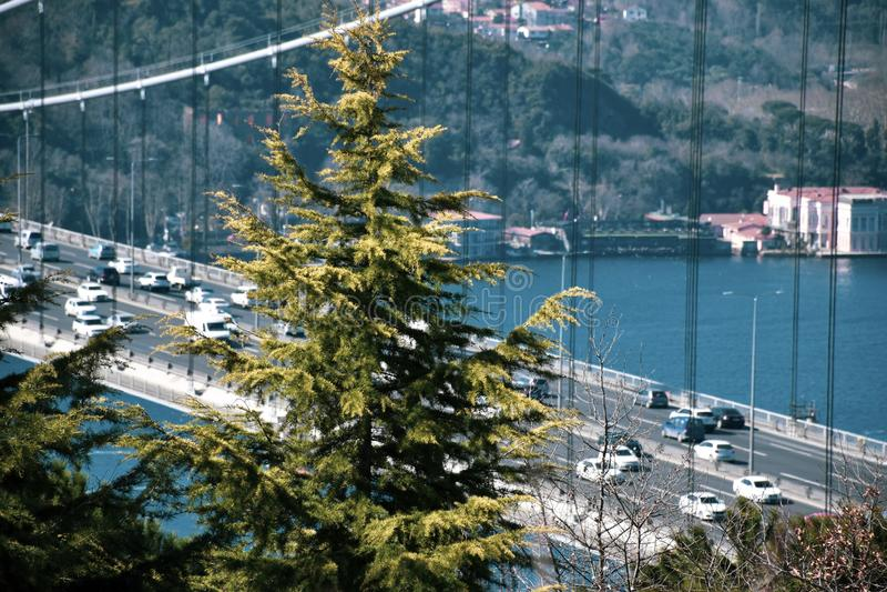 Bopshorus Ä°stanbul, Τουρκία στοκ φωτογραφία με δικαίωμα ελεύθερης χρήσης