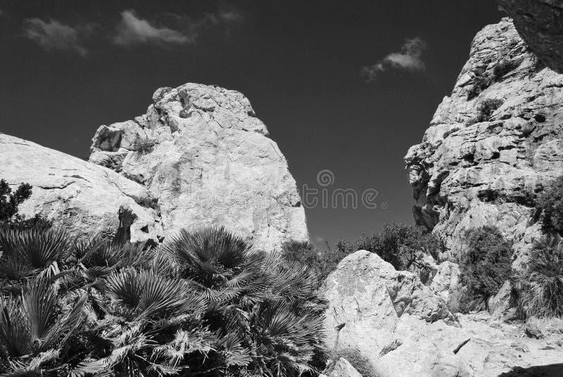 Boquer valley, Majorca island stock photos