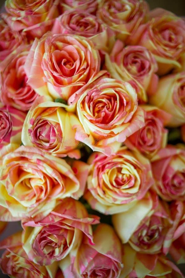 Boquet des roses colorées image stock