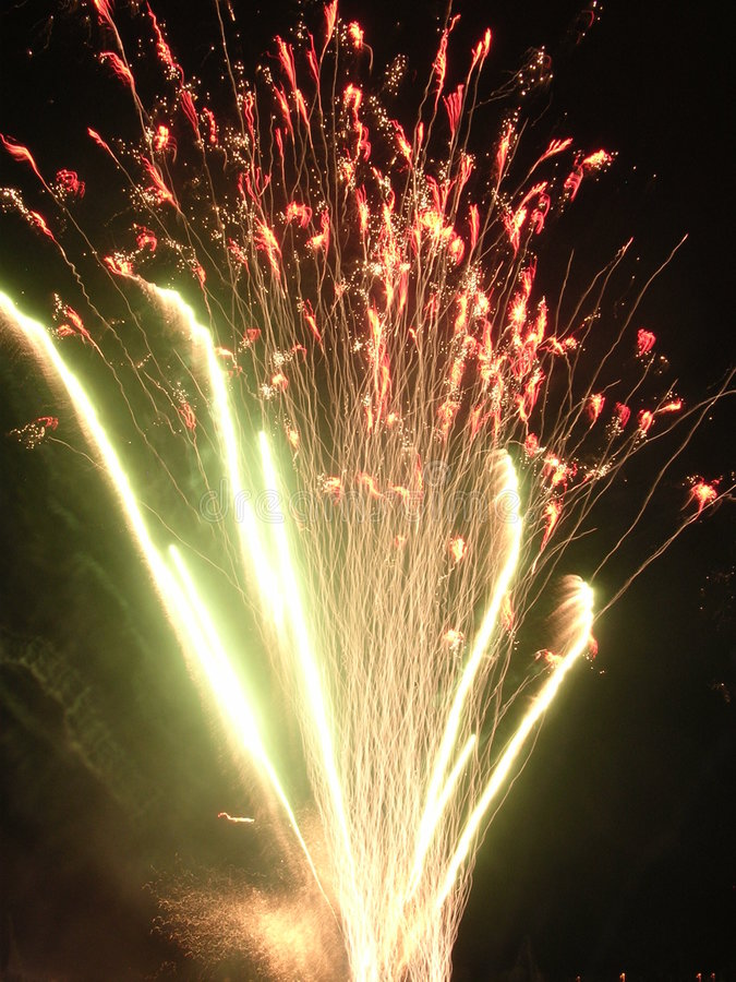 Boquet of Flame stock photo