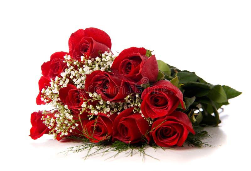 Boquet o rosas rojas en blanco imagen de archivo