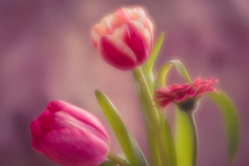 Boquet rosa del fiore fotografie stock libere da diritti