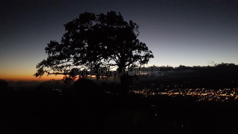Boquete nocą zdjęcie royalty free