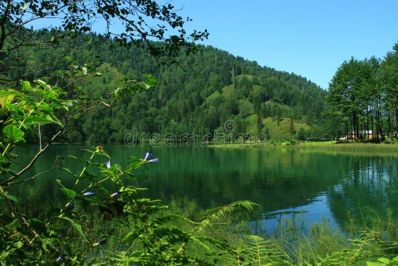 Borçka Lake-2 fotografia de stock royalty free
