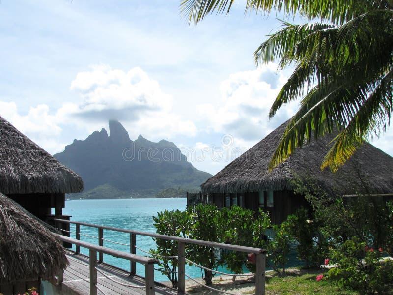 Bora Bora - рай в цвете стоковое фото rf