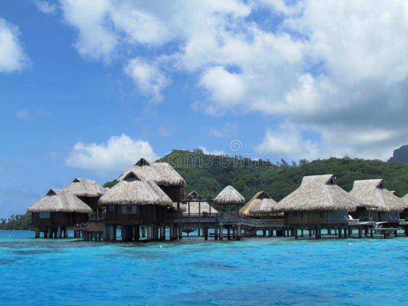Bora Bora - рай в цвете стоковые изображения