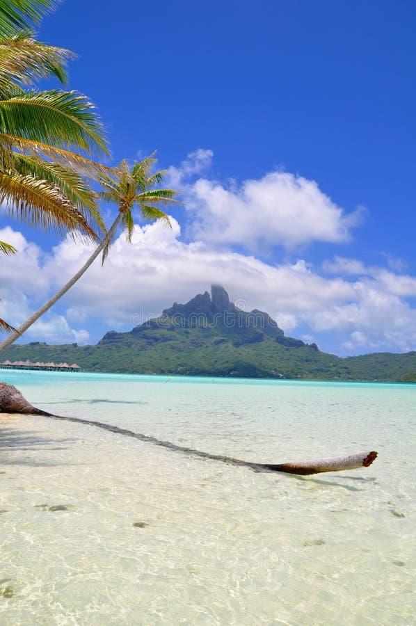 Bora Bora, γαλλική Πολυνησία στοκ φωτογραφίες με δικαίωμα ελεύθερης χρήσης