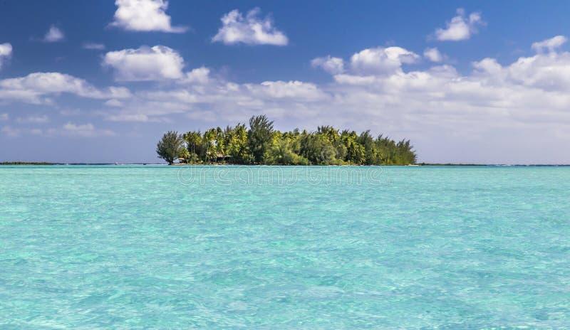 Bora Bora atoll motu and lagoon - French Polynesia. View of motu of bora bora island from lagoon. Boat trip during honeymoon in crystal transparent blue and royalty free stock image