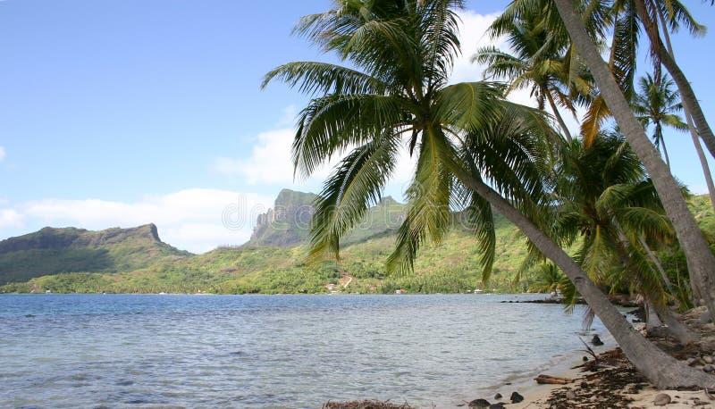 Bora Bora Tahiti images libres de droits