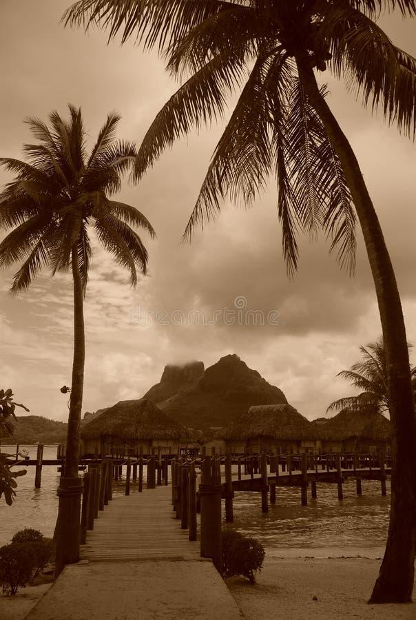 Bora Bora-Weinlese. Berg Otemanu zwischen den Palmen. Französisch-Polynesien stockbild