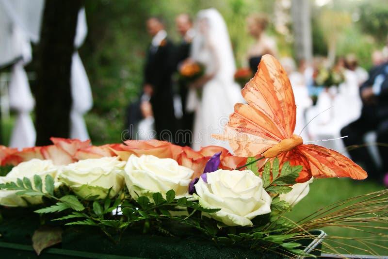 Download Borboleta foto de stock. Imagem de borboleta, bouquet, alaranjado - 108976