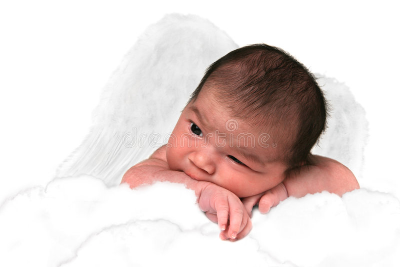 Borboleta adorável do bebé foto de stock