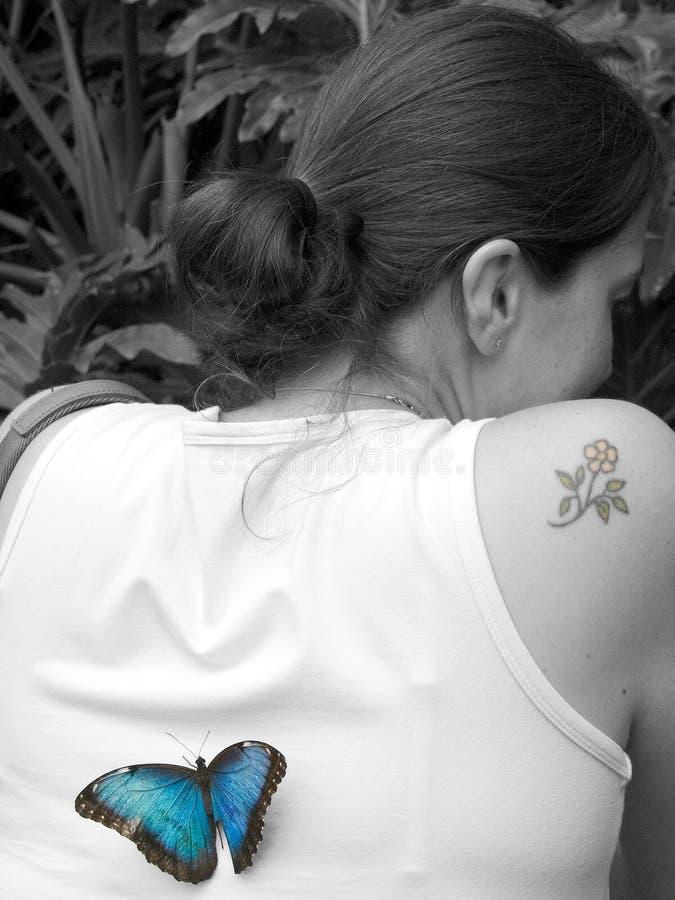 Borboleta azul na senhora preto e branco fotos de stock royalty free