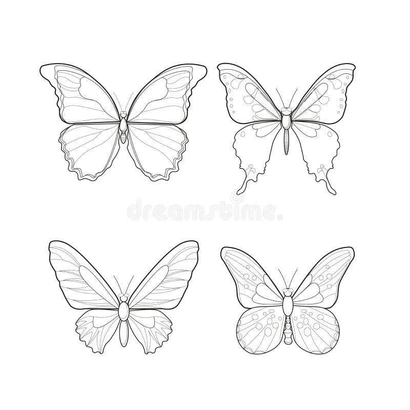 Borboleta bonita da silhueta Ilustração do vetor ilustração stock