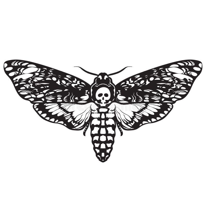 Borboleta da traça do crânio Traça de falcão da cabeça de morte ilustração stock