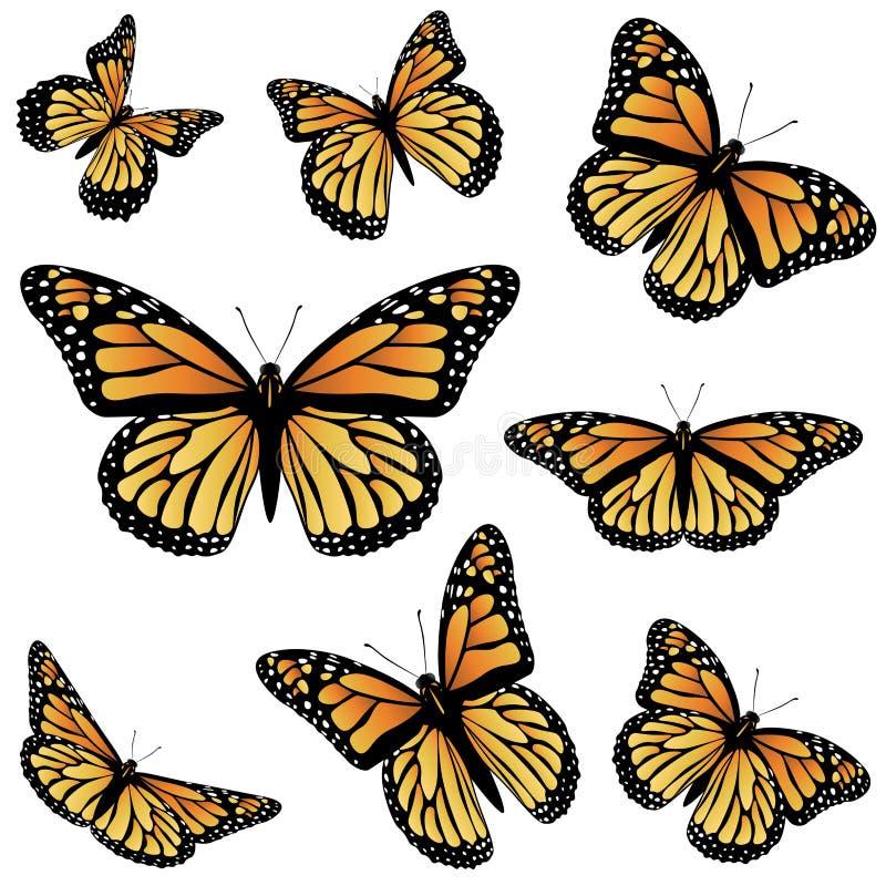 Borboleta de monarca alaranjada ilustração royalty free