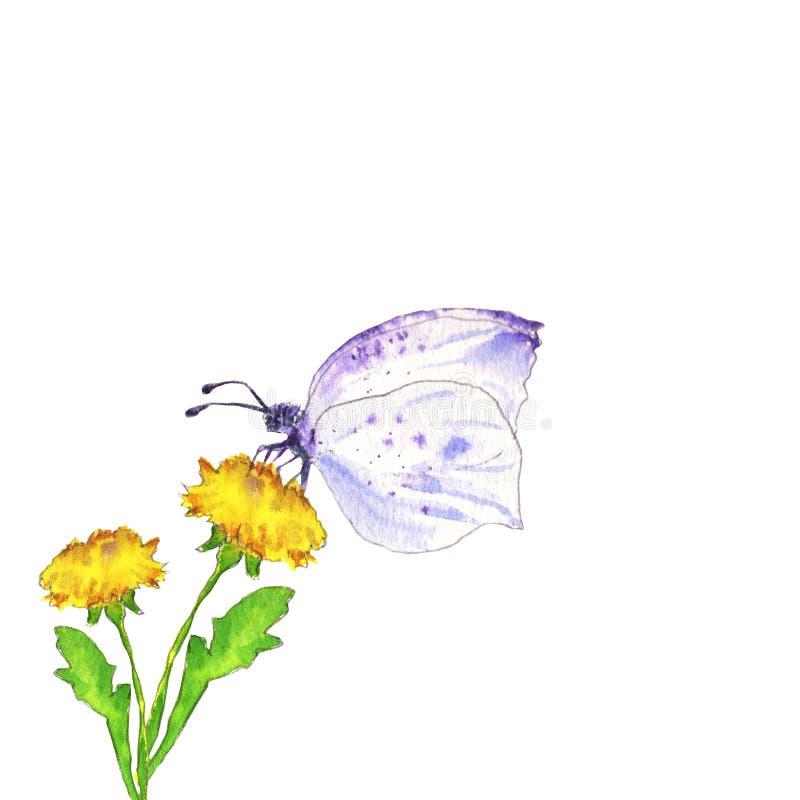 Borboleta e dente-de-leão violetas ilustração royalty free