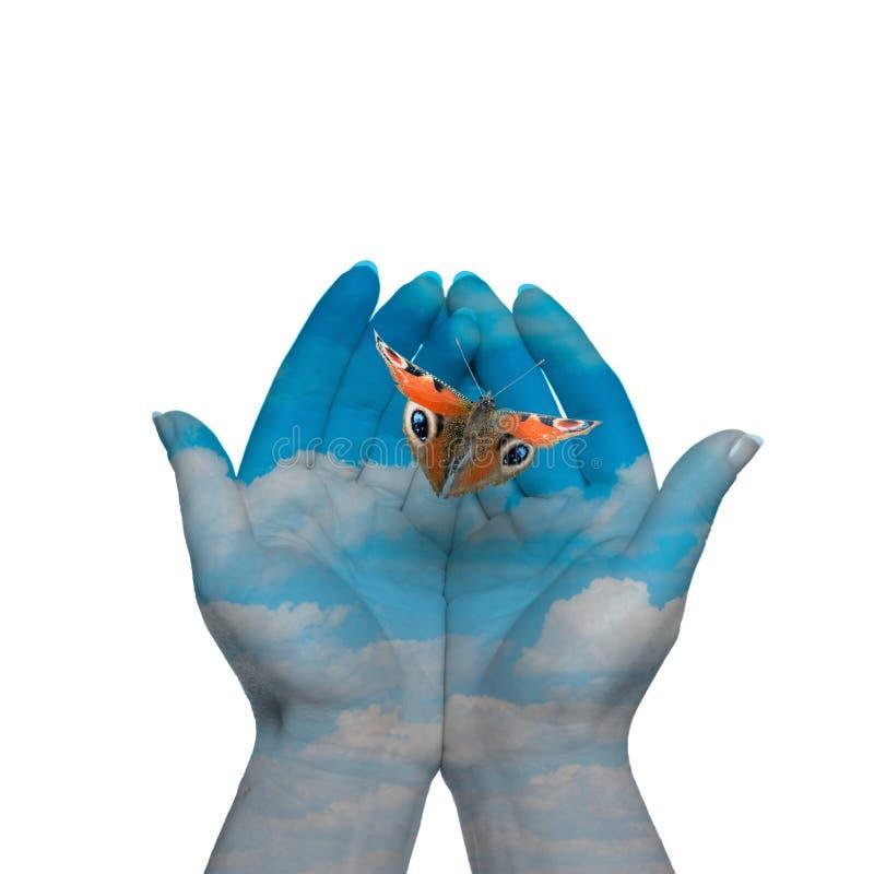 A borboleta em suas mãos fotos de stock royalty free