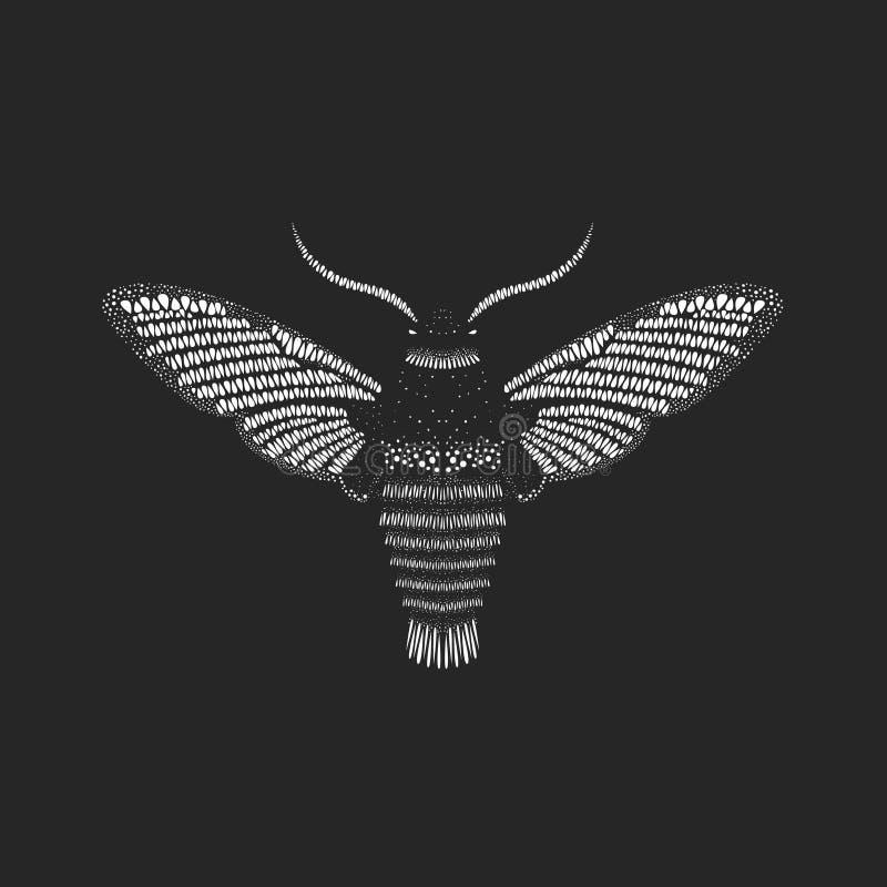 Borboleta surpreendente da mosca ilustração royalty free