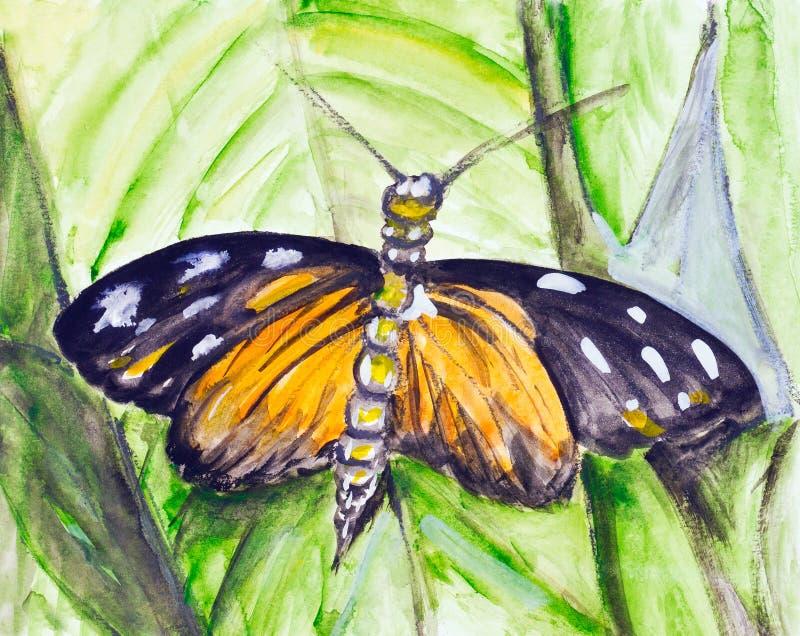 Borboleta tropical da aguarela ilustração royalty free