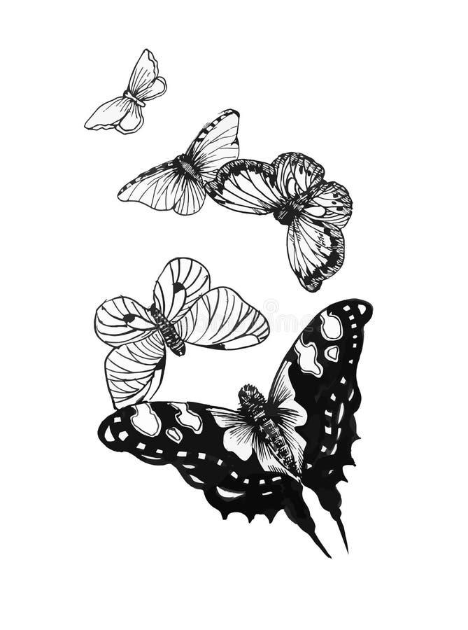 Borboletas brancas pretas ajustadas de um tatuagem ilustração royalty free